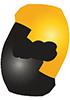 IDSC_logo
